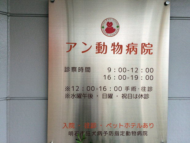 アン動物病院の診察時間