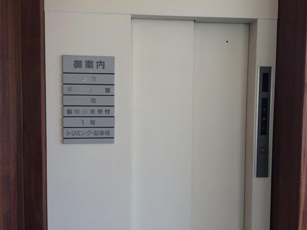 バークレー動物医療センターのエレベーター