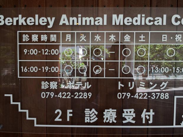 バークレー動物医療センターの診療日や休診日