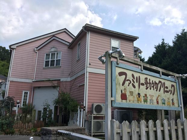 神戸市北区のファミリー動物クリニック
