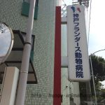 神戸市北区のフランダース動物病院