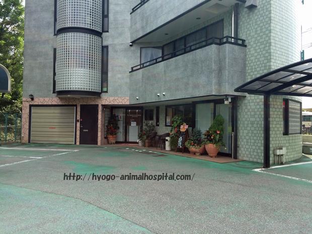 フランダース動物病院の正面玄関