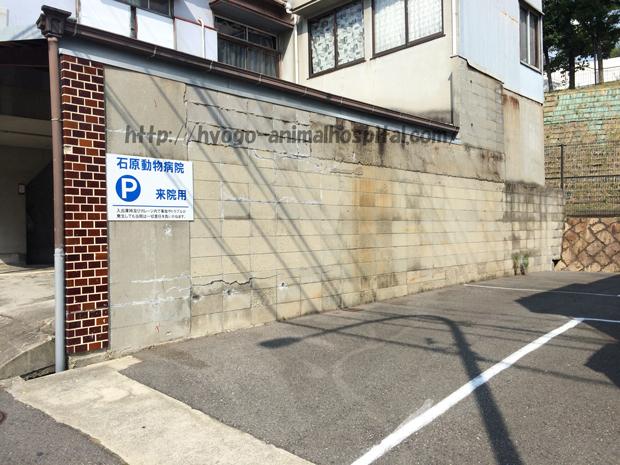 石原動物病院の駐車場