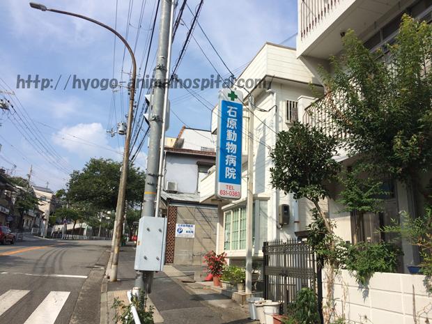 長田区石原動物病院の特徴