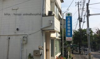 長田区の石原動物病院