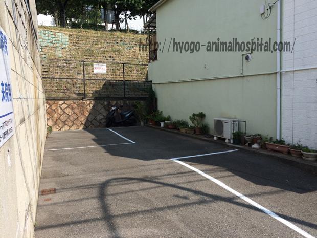 長田区石原動物病院の駐車場
