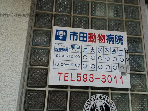 市田動物病院の診療時間