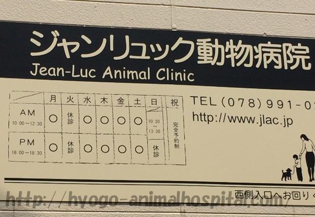 ジャンリュック動物病院の診療時間