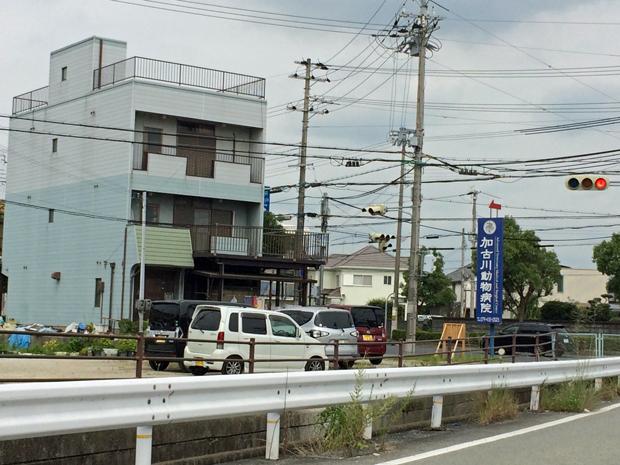 加古川動物病院の口コミ