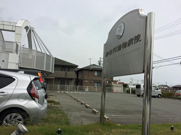 加古川動物病院の評判
