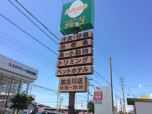 ペットワールドアミーゴ加古川店