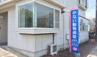 姫路市のかない動物病院