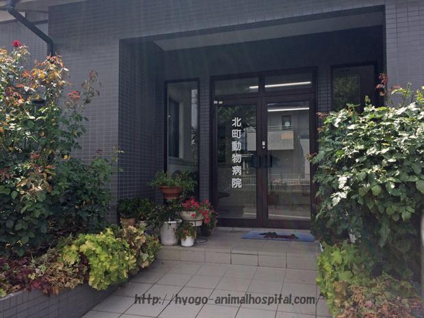 北町動物病院の正面玄関