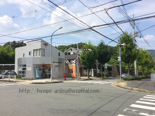 北町動物病院隣の郵便局