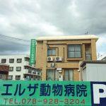 神戸エルザ動物病院の口コミ・評判情報