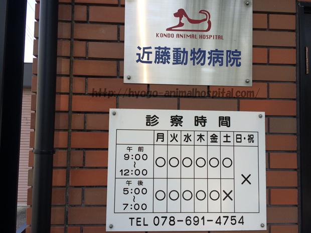 近藤動物病院の診療時間