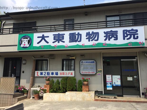 神戸市北区大東動物病院