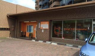 神戸市北区のオレンジ動物病院