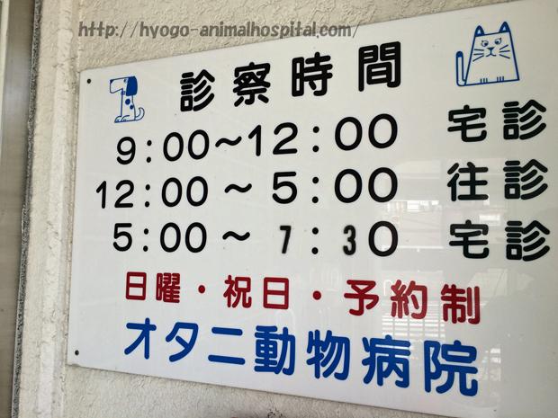 オタニ動物病院の診療時間