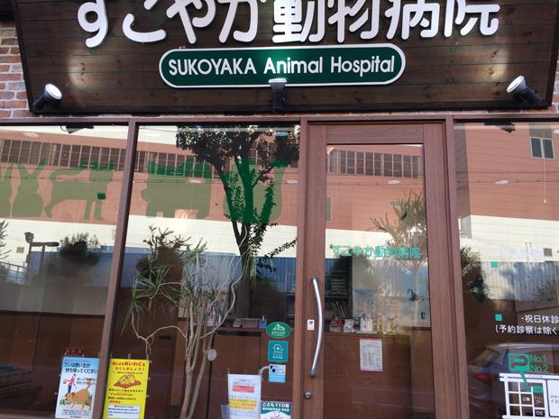 すこやか動物病院の特徴