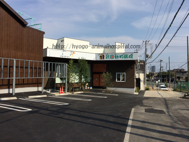 武田動物病院の駐車場