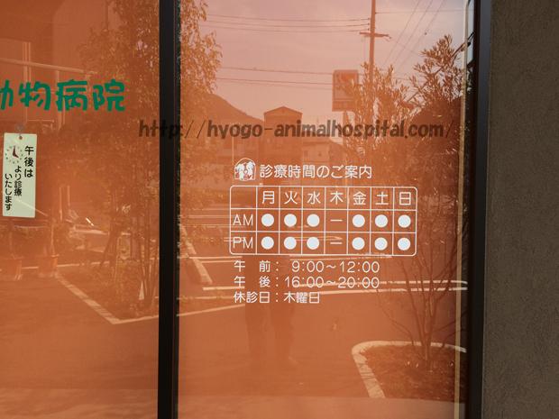 武田動物病院の診療時間