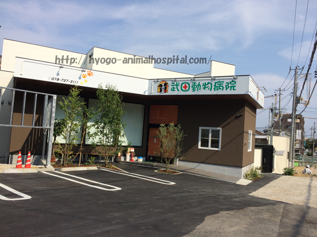 須磨区の武田動物病院の特徴