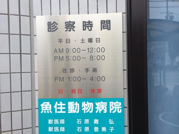 魚住動物病院の診療時間