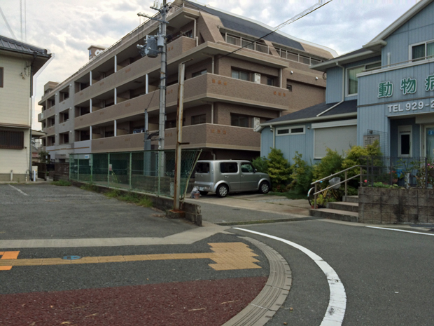 横山動物病院の診療時間