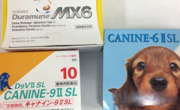 犬の混合ワクチン