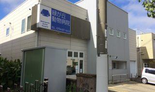 三木市の緑が丘動物病院の口コミや評判や診療時間