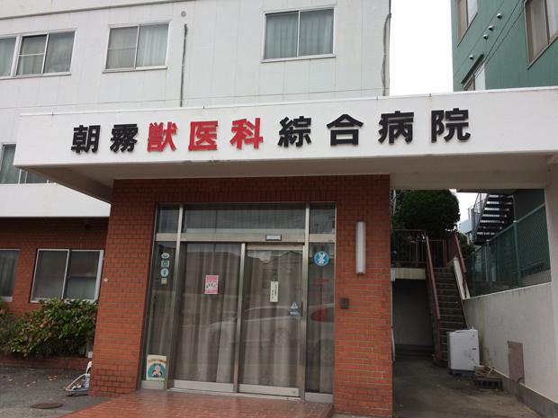 朝霧獣医科総合病院前