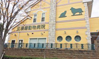 北須磨動物病院 口コミ 評判 神戸市須磨区