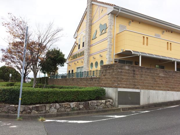 北須磨動物病院の評判