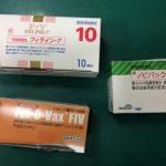 猫エイズ ワクチン 副作用