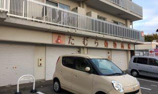 たむら動物病院 神戸 須磨区 口コミ 評判