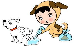 犬 膀胱炎 繰り返す 原因