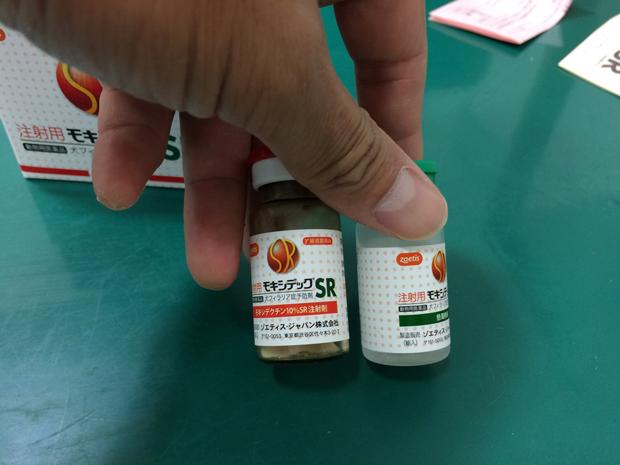 フィラリア 注射 効果
