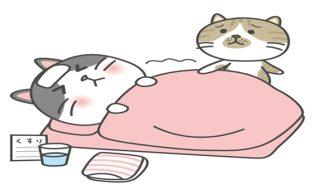 猫風邪 症状 嘔吐
