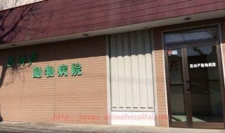 西神戸動物病院
