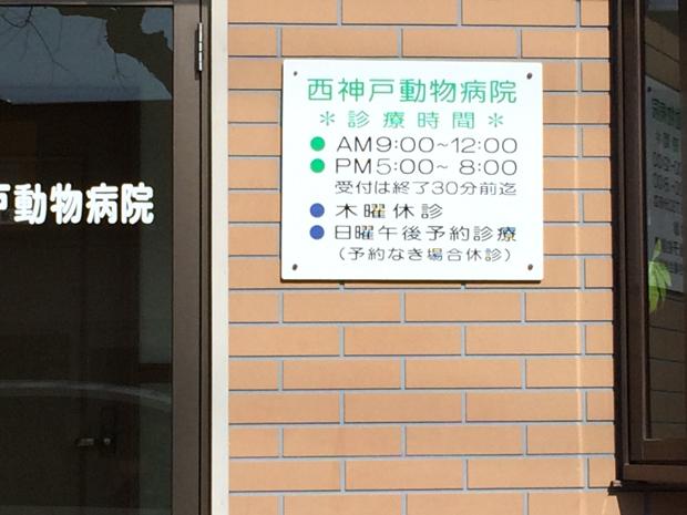 西神戸動物病院の休診日