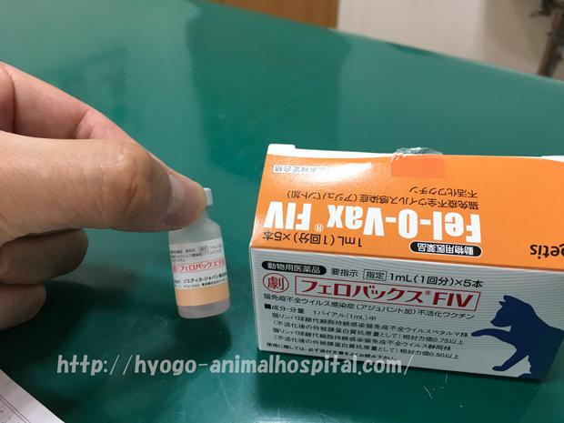 猫エイズワクチン
