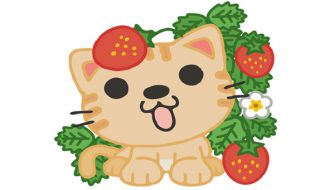 猫 いちご 食べていい