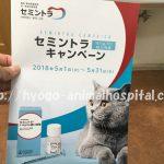 セミントラ 副作用