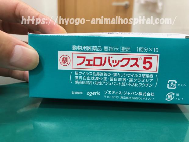 猫カリシウイルス感染症