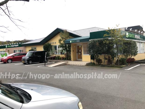 神戸市北区さかたに動物病院