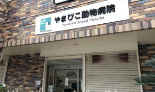 やまびこ動物病院 神戸市西区