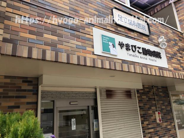 神戸市西区 やまびこ動物病院