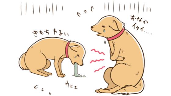 犬 輸血 リスク