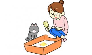 猫 ストルバイト 治療